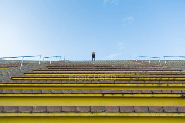 Empresário de terno preto com máscara meerkat em pé no topo das escadas — Fotografia de Stock