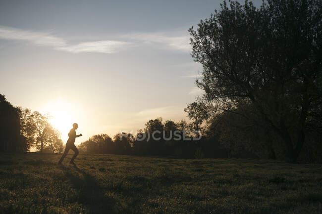 Silueta del hombre corriendo en un parque al amanecer - foto de stock