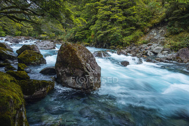 New Zealand, Southland, Te Anau, Long exposure of Hollyford Riverrushing inFiordlandNational Park — Stock Photo