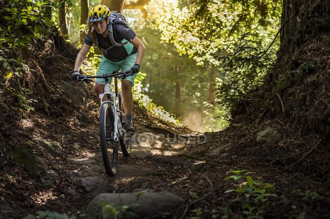 Mulher montando mountain bike na trilha florestal, Santa Cruz, Califórnia, EUA — Fotografia de Stock