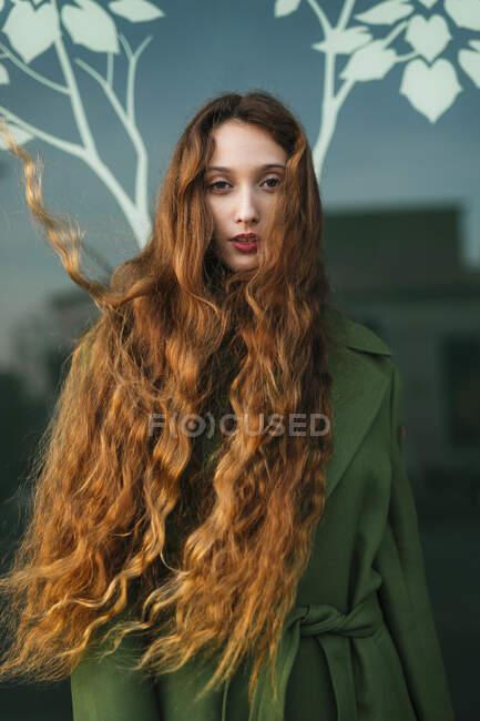 Retrato de ruiva jovem com cabelo soprando — Fotografia de Stock