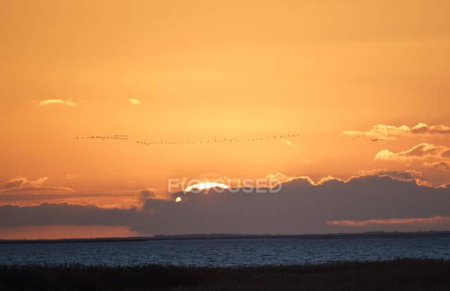 Германия, Мекленбург-Западная Померания, закат Муди над берегом Балтийского моря — стоковое фото