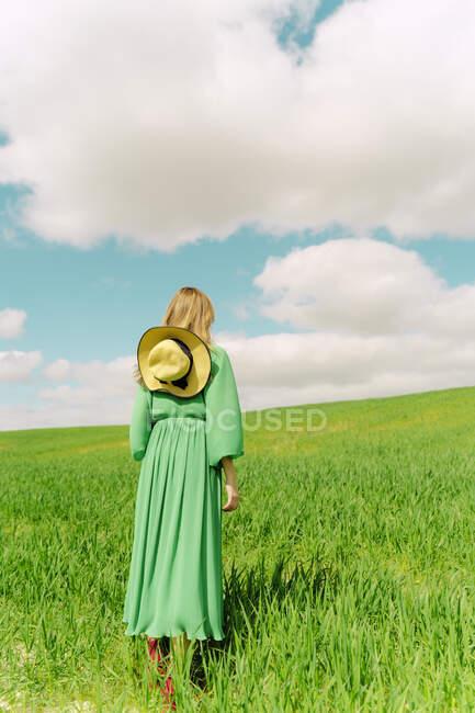 Вид сзади женщины в зеленом платье, стоящей на поле — стоковое фото