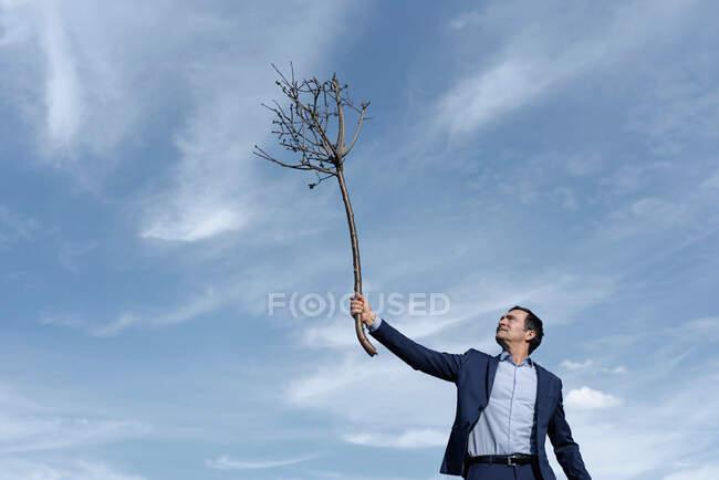 Maduro hombre de negocios sosteniendo un árbol desnudo - foto de stock