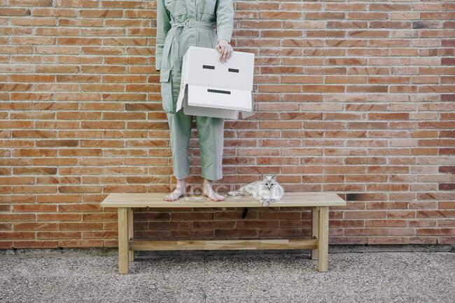 Mujer de pie en el banco con gato delante de la pared de ladrillo que sostiene la caja de cartón con la cara triste - foto de stock