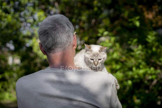 Vista trasera del hombre mayor sosteniendo a su gato en el jardín - foto de stock