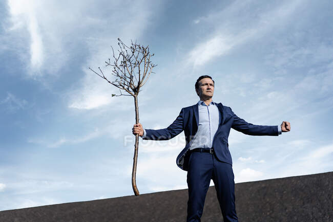 Mature businessman holding a bare tree on a disused mine tip — Stock Photo