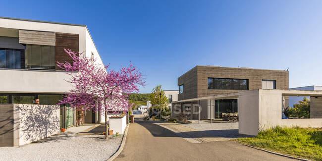Germania, Baden-Wurttemberg, Egert, Viale del moderno sobborgo in primavera — Foto stock