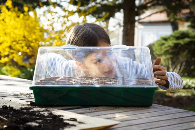 Chica mirando en su pequeño invernadero - foto de stock