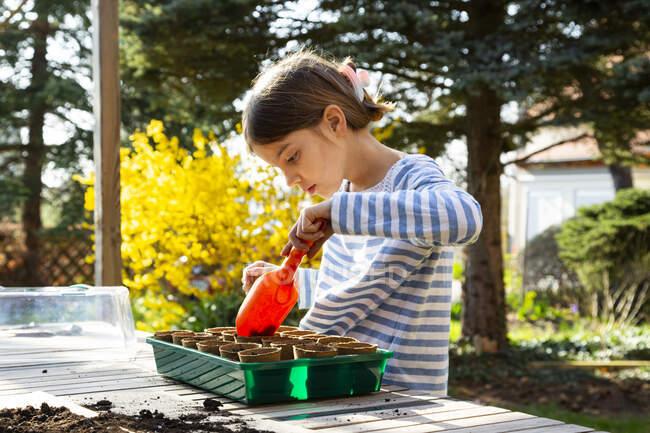 Chica llenando potes de vivero con tierra para su pequeño invernadero - foto de stock