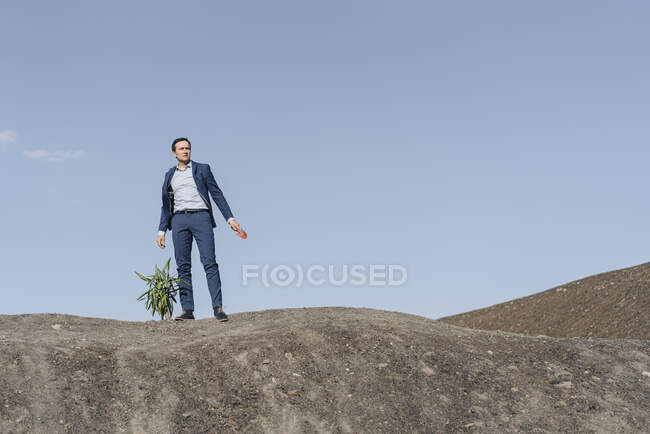 Mature businessman with a plant standing on a disused mine tip — Stock Photo