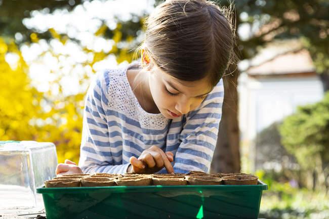 Chica mirando criaderos con tierra en su pequeño invernadero - foto de stock