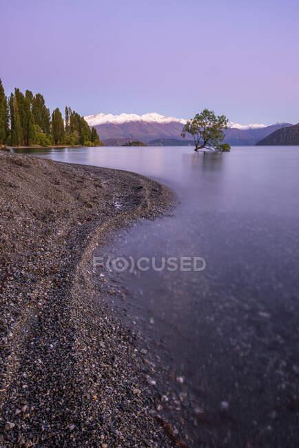 Нова Зеландія, Отаго, озеро Ванака і Ванака на світанку фіолетового кольору. — стокове фото