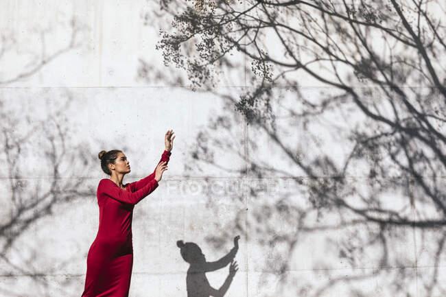 Mujer vestida de rojo con pose de bailarina y sombras de árboles en la pared - foto de stock