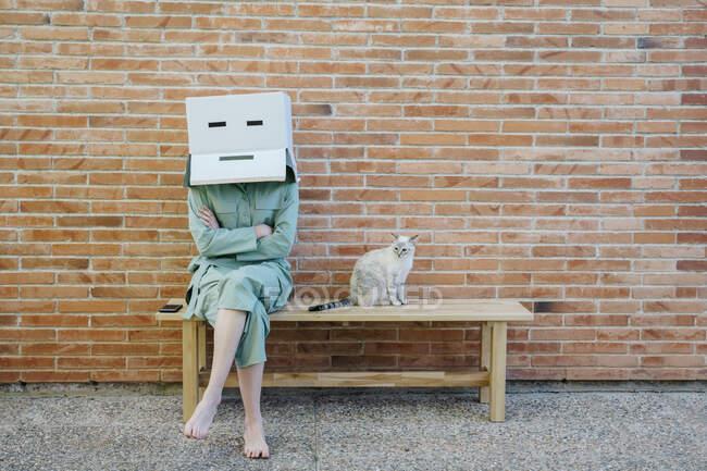 Mujer sentada en el banco con gato delante de la pared de ladrillo con cara seria en la caja de cartón - foto de stock