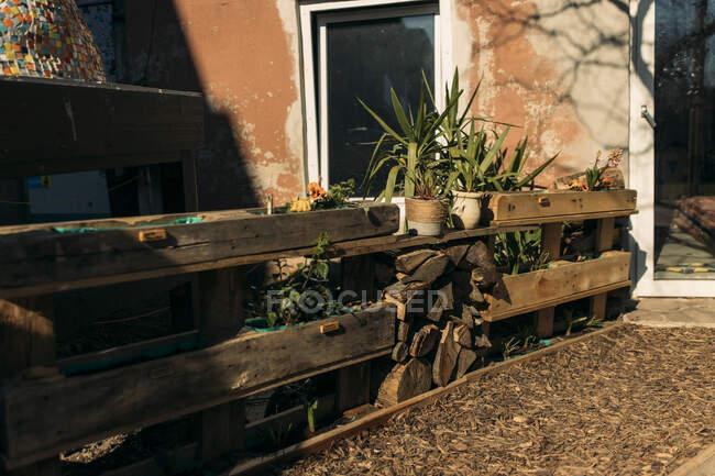 Індивідуальний сад у занедбаному будинку. — стокове фото