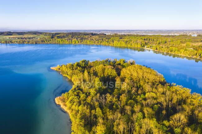 Німеччина, Баварія, Іннінг-ам-Аммерсі, вид безхмарного неба над лісовим узбережжям острова Ворт. — стокове фото