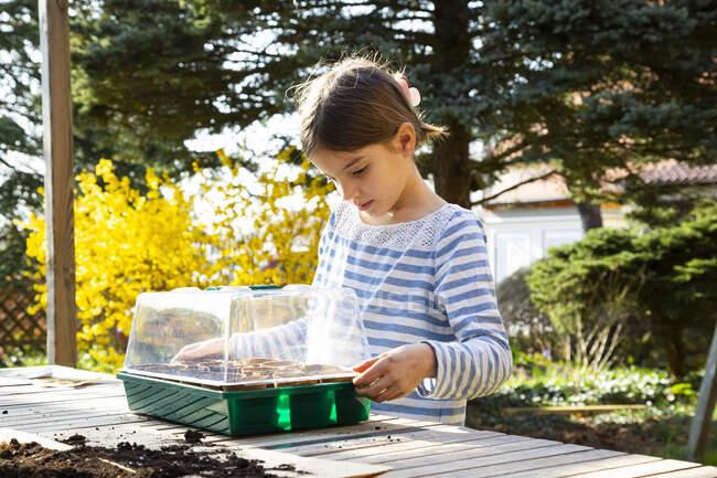 Chica cubriendo su pequeño invernadero - foto de stock