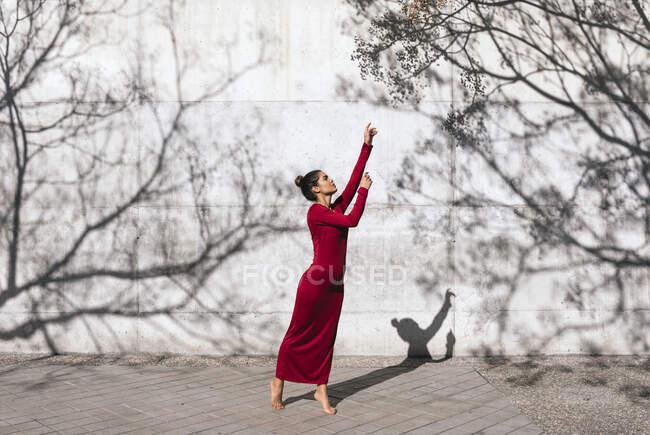 Жінка в червоній сукні з позою танцюриста і тінями дерев на стіні. — стокове фото