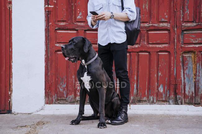 Vista de la cosecha de un joven con teléfono celular esperando con su perro delante de una vieja puerta de madera roja - foto de stock
