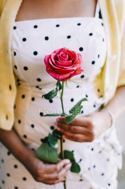 Женщина в платье в горошек с розой — стоковое фото