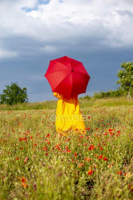 Доросла жінка з червоною парасолькою стоїть на макове поле проти неба. — стокове фото