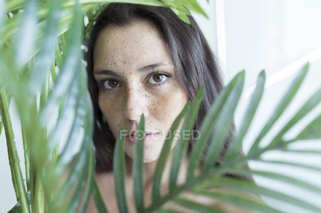 Primer plano de la hermosa mujer joven mirando a través de las hojas en casa - foto de stock