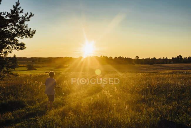 Vista posteriore del ragazzo che gioca sul campo contro il cielo al tramonto, Polonia — Foto stock