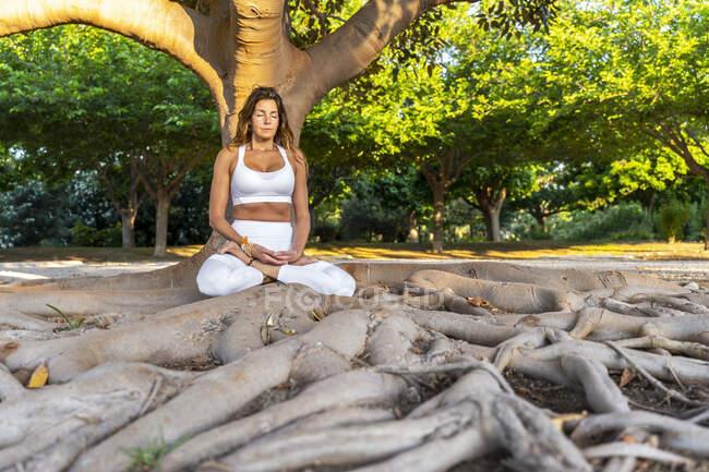 Зрелая женщина медитирует, сидя у ствола дерева в парке — стоковое фото