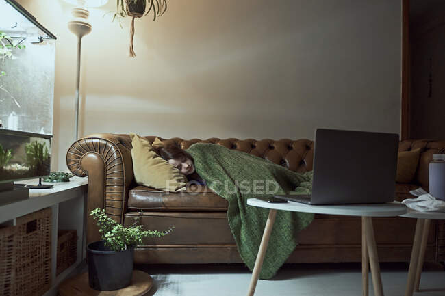 Sick girl sleeping on sofa in illuminated living room at home — стоковое фото