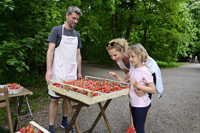 Vendedor masculino mirando a mujer con hija eligiendo fresas en puesto de mercado - foto de stock