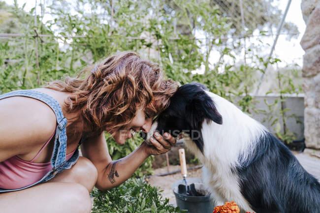 Крупный план счастливой женщины, играющей с пограничным колли в огороде — стоковое фото