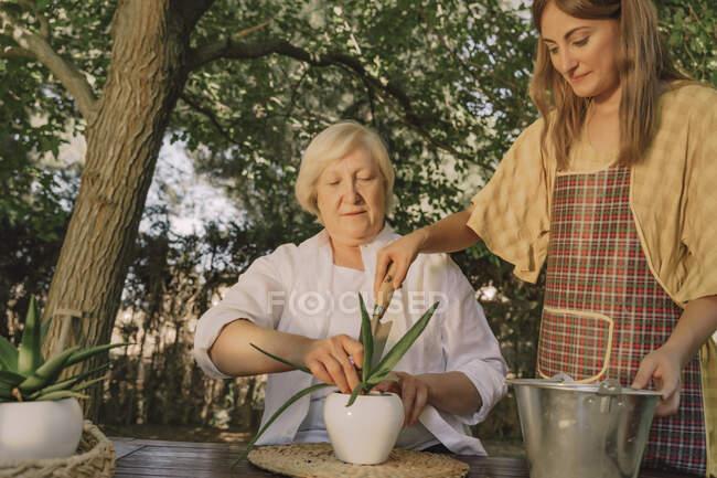 Mulher sênior com filha plantando na mesa no quintal — Fotografia de Stock