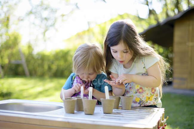 Meninas bonitos plantando sementes em pequenos potes na mesa no quintal — Fotografia de Stock