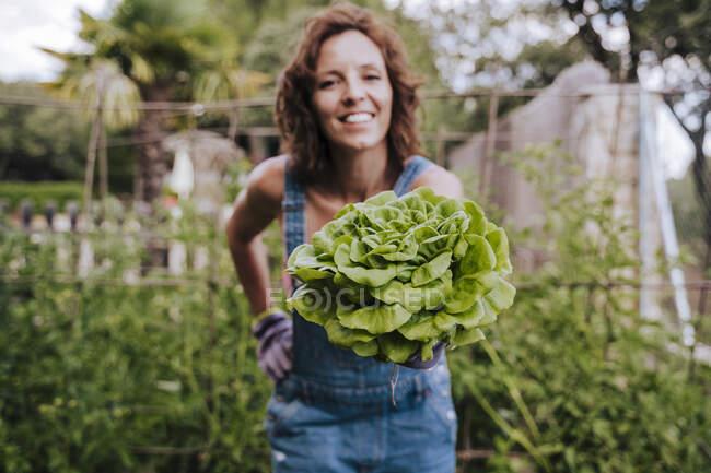 Усмішка середньодорослої жінки, яка тримає салат, стоячи в городі овочів. — стокове фото