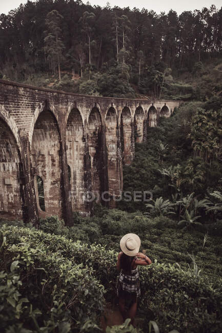 Vista posteriore del turista femmina in piedi tra le piante mentre guarda il ponte ad arco nella foresta, Sri Lanka — Foto stock