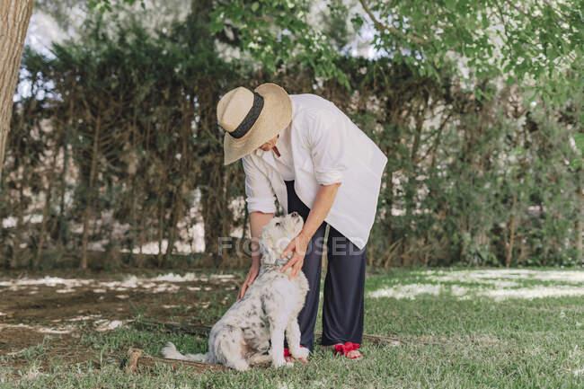 Mujer mayor usando sombrero con perro de pie en tierra herbácea en el patio - foto de stock