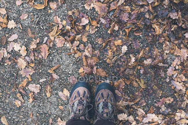 Italy, Verona, Boots on leaves in autumn — Stock Photo