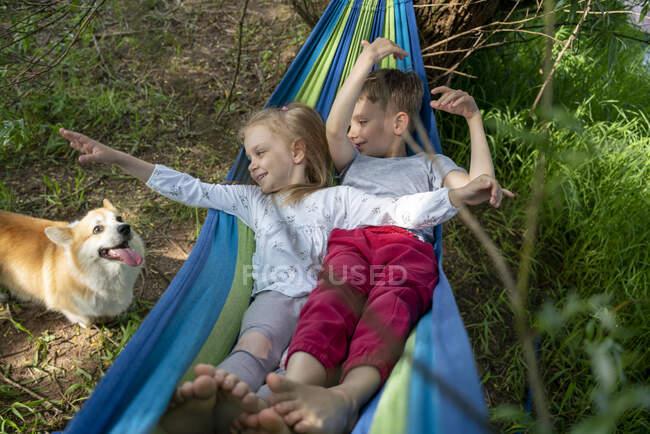 Lindos amigos mirando al perro mientras se relaja en la hamaca en el bosque - foto de stock
