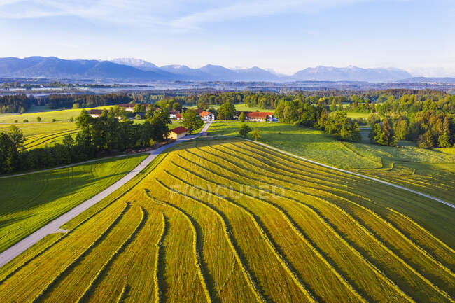 Alemanha, Baviera, Alta Baviera, Tolzer Land, perto de Eurasburg, Hofstatt, Campo e estrada arborizados, vista aérea — Fotografia de Stock