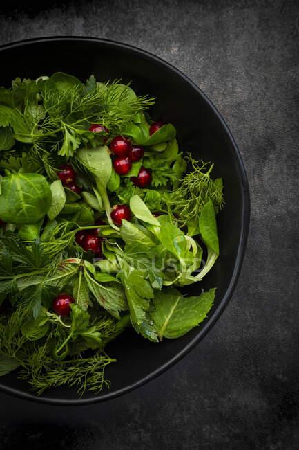 Fresh salad with arugula, radish, greens and herbs. top view. — Stock Photo