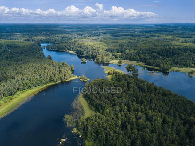 Vista del río y el bosque desde el dron - foto de stock