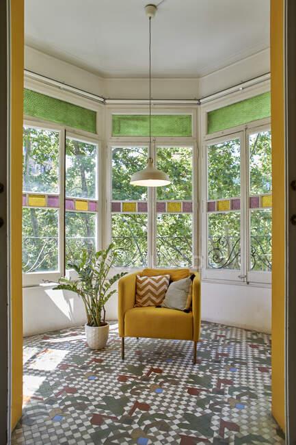 Пустой стул в горшке растение против окна в гостиной — стоковое фото