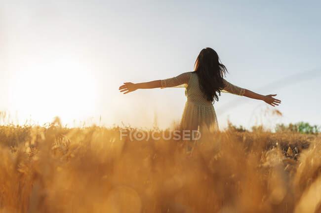 Молода жінка з витягнутими руками стоїть посеред пшеничної ферми проти ясного неба під час заходу сонця. — стокове фото