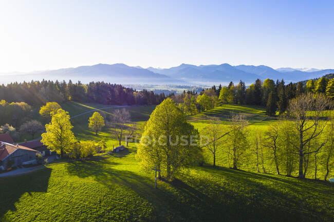 Germania, Baviera, Buchberg, Drone vista sul paesaggio verde della campagna all'alba primaverile nebbiosa — Foto stock