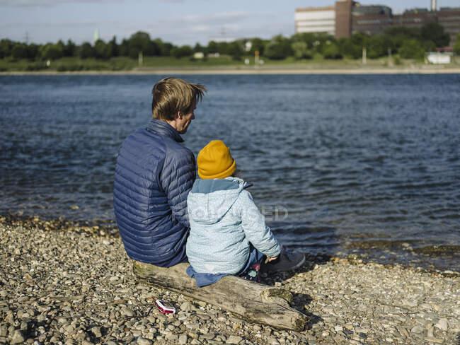 Padre e hija mirando el río Rin mientras están sentados en el tronco durante el día soleado - foto de stock