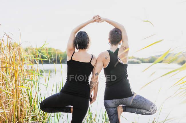 Друзья-женщины практикуют представление деревьев у озера на фоне ясного неба — стоковое фото