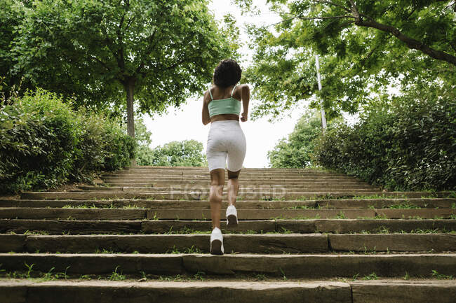 Вид сзади на бегунок на ступеньках — стоковое фото