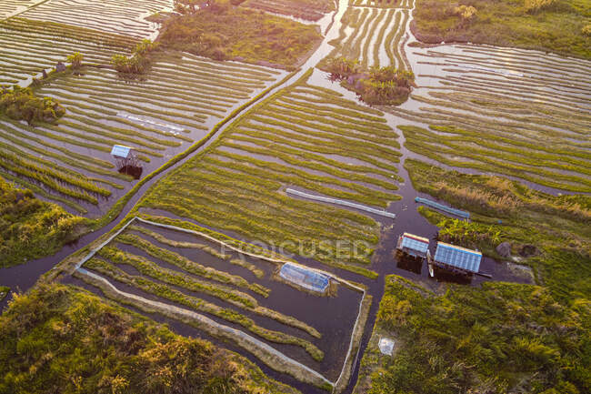 Myanmar, Stato Shan, Nyaungshwe Township, Veduta aerea dei giardini galleggianti sul lago Inle — Foto stock