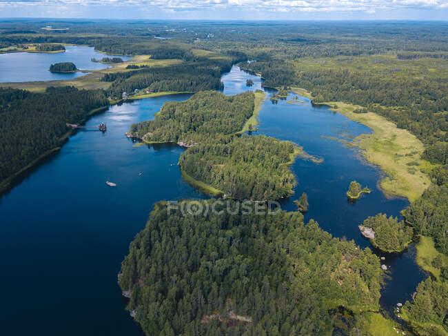 Vista aerea del fiume nella foresta — Foto stock